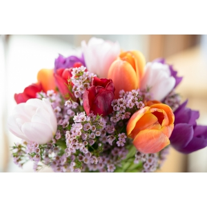 Adu primavara in inima celor dragi cu ajutorul serviciului de livrare flori in Bucuresti!