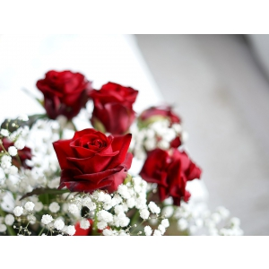 Cum sa alegi buchete de trandafiri in functie de culoare