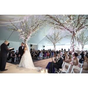 organizare nunta la cort. Inchirieri corturi pentru nunta