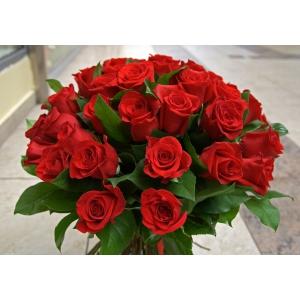 Foloseste serviciul de livrare flori in Bucuresti si ofera-le celor dragi trandafiri de Ecuador!