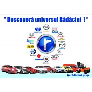 autorulate. Universul Radacini Grup