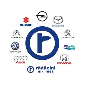Rădăcini Grup - performanțe în domeniul vânzărilor auto în 2018