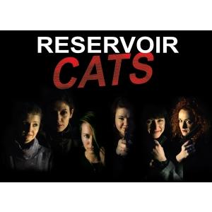 Laura Cosoi joaca in comedia neagra Reservoir Cats sambata 20 mai la Cinema Pro
