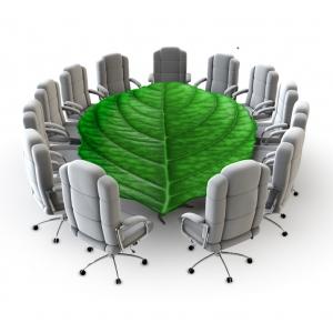 cursul auditor de mediu. auditor de mediu organizational