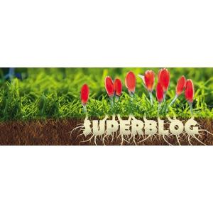 dezvoltare creativitate. Spring SuperBlog 2016