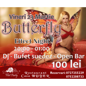 Petrecere Butterfly Night Effect