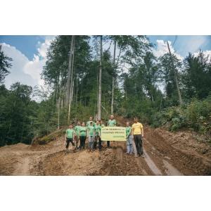 Leonardo. Leonardo DiCaprio susține salvarea pădurilor virgine din România