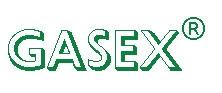 michael schmidt. GASEX lanseaza in Romania senzorii de debit Schmidt Feintechnik