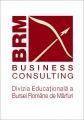 Navigati intr-un nou BRM Business Consulting ... virtual