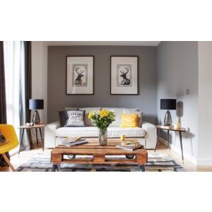 Cateva dintre cele mai populare stiluri de design interior