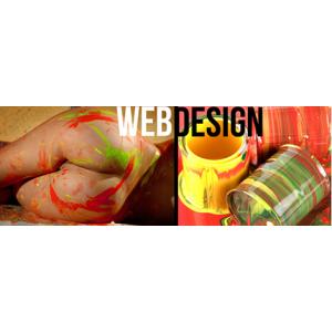 web design oradea. web design