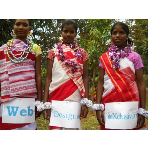 Colaboram cu firme de WEB DESIGN din India pana in SUA !