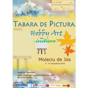 Deprinde tainele picturii in Tabara de pictura pentru adulti Hobby Art