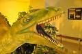 Dinozauri recent descoperiti, in premiera mondiala la Iasi