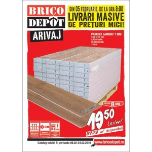 arivaj. Produsele Arivaj Brico Dépôt impun ritmul  comercial și dinamica pieței