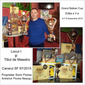 arbitru. Locul 1 si titlul de Maestru la Concursul Grand Balkan - canarul SF 97/2015 Proprietar Domnnul Sorin Florea Antrenor Domnul Florea Neacsu