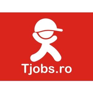 Congresul UNBR 2009 - 2010 – 2011. 2 ani de locuri de muncă oriunde în lume. Statistici Tjobs.ro iun.2009– iun.2010, iun.2010– mai 2011