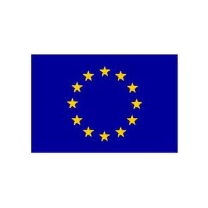 tipique. Curs Expert Accesare Fonduri Structurale si de Coeziune Europene 17 - 18 Noiembrie 2011 Bucuresti