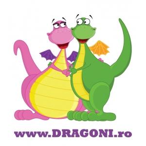 Dragoni ro. Lasa-ti copilul sa invete in joaca cu dragoni.ro!