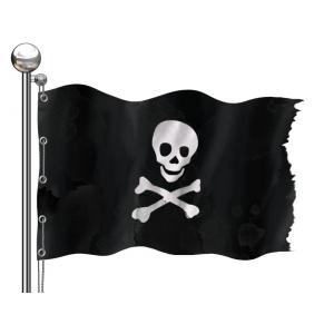 Pirat fara voie pe oceanul virtual