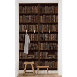 biblioteca. tapet biblioteca