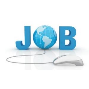 prima jumatate. Evolutia locurilor de munca in prima jumatate a anului 2011