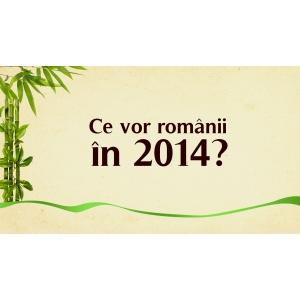 jad. Ce vor romanii in 2014?