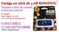 Castiga un stick de 4 GB pe portalul www.ideicadouri.com