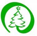 Triciclete cu transport gratuit. Pentru prima dată în România : Brazi de Crăciun cu transport gratuit la nivel naţional !
