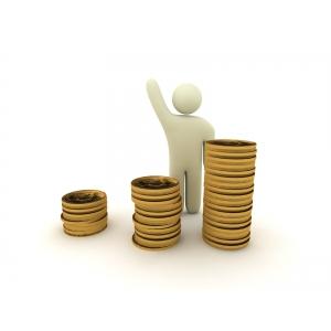 Cum sa faci bani in 2013