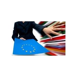 licitatiile europene. Licitatii UE