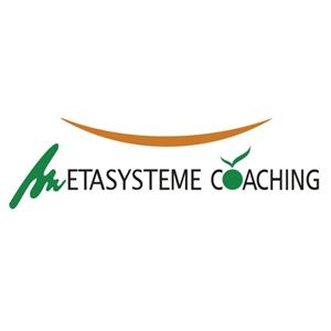 Metasysteme Coaching
