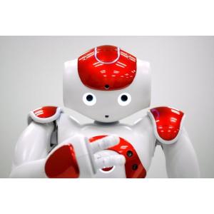 Învaţă să programezi un robot umanoid la cursul ECDL Computing – programare NAO în Python!