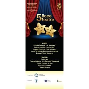 teatru, licee, elevi, liceeni, ECDL, cultura, concurs, gala, 5 licee - 5 teatre