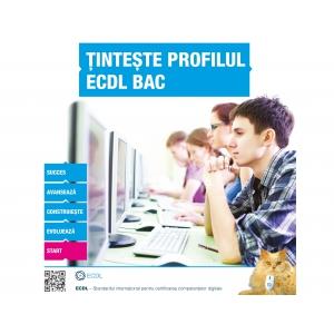 liceenii. elevi, Competenţe Digitale, Bacalaureat, ECDL, liceenii, BAC, examen, computer, educatie