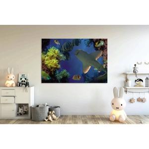 Tablou canvas orizontal 50x70cm - myCanvas Ploiesti
