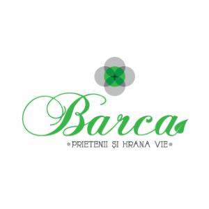 tort raw vegan. 10 motive pentru care si tu ar trebui sa alegi abonamente raw vegan de la Restaurant Barca