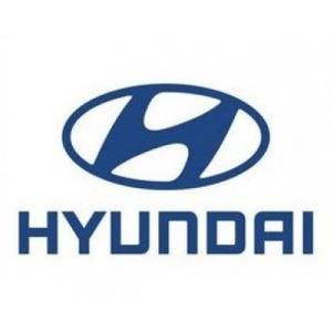 piese de schimb. Ai nevoie de piese de schimb pentru masina ta Hyundai?