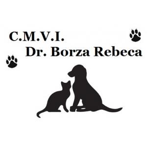 medic veterinar. Ai nevoie de un medic veterinar? Apeleaza la C.M.V.I Dr. Borza Rebeca!