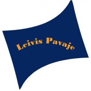 buzau. C&A Leivis Pavaje : comercializare pavele in Buzau!