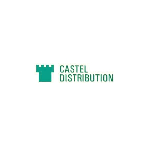 Castel Distribution- cablu date FTP