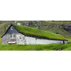 ventilatoare de acoperis. De ce sa alegi acoperis verde?