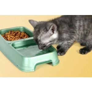 vitamine si minierale. Hrana si vitamine pentru pisici