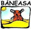agentie imobiliara baneasa. Lansare site Baneasa