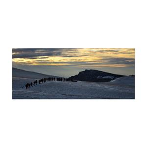 daos. Scola montana in Bucegi