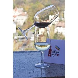 Cele mai bune vinuri românești, medaliate de juriul revistei Vinul.Ro