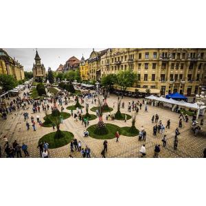 4 motive sa angajezi un detectiv particular in Timisoara