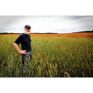 Afacerea momentului in agricultura pe suprafete mici