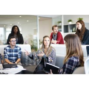 parteneriate de afaceri. RBE Connect a deschis seria de parteneriate de afaceri cu avocati, auditori, evaluatori si consultanti de afaceri