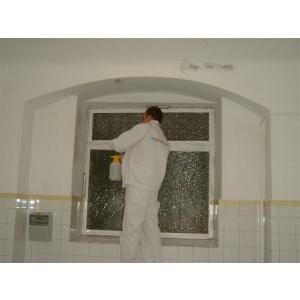 mucegai pe pereti. Eliminarea definitiva a mucegaiului de pe pereti cu tratamentul ecologic BioRid